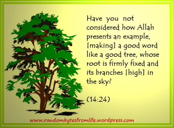 arbol-tree (1) modified