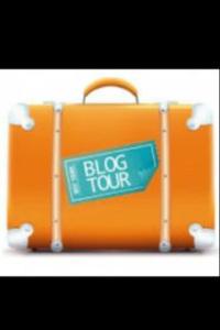 Blog Tour Award